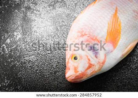Raw tilapia fresh fish on black stone background - dark processing style pictures