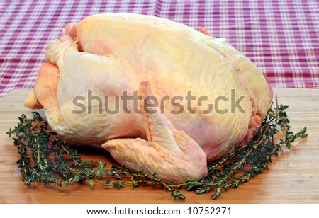 Raw whole chicken/turkey surrounded with thyme on a cutting board. - stock photo
