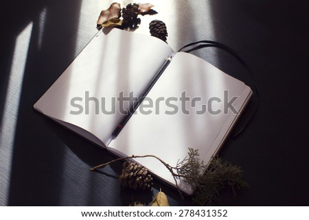 rays of light on open notebook - stock photo