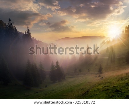 rays of the evening sun breaking through the clouds and fog to the meadow of coniferous forests in mountains - stock photo