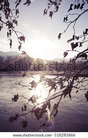 Rays of the setting sun framed by branches with dead leaves in fall at sunset over the Chilkat river in Alaska.