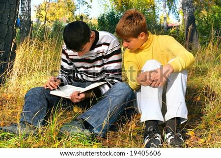 reading boys - stock photo