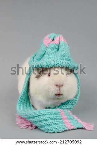 ready for winter - stock photo