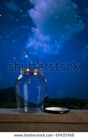 real fireflies in a calm night - stock photo