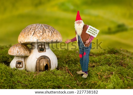 Real life garden gnome pointing at his toadstool house - stock photo