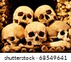 Real sculls and bones sorted on a pile - stock photo