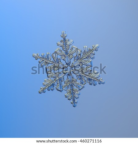 Real snowflake macro photo on blue background