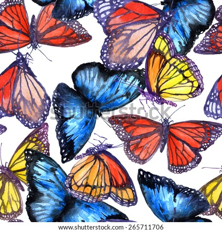 Realistic butterfly paintings - photo#20