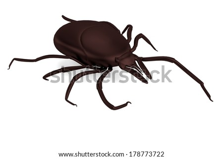 realistic 3d render of tick