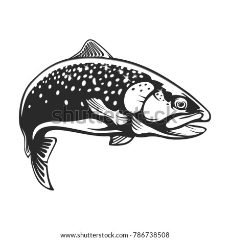 Realistic drawing rainbow trout jumping out stock - Dessin truite ...