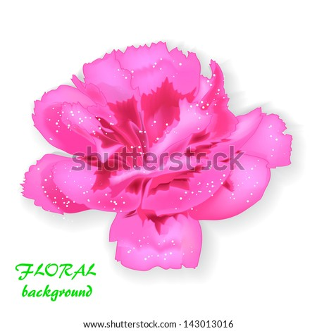 realistic pink flower, isolated on white background raster