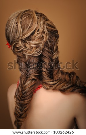 Rear view of a beautiful woman with elegant elaborate hairstyle - stock photo
