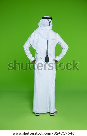 Rear view of businessman with hand on hip - stock photo