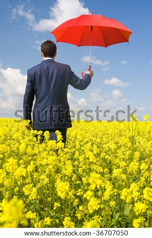 Rear view of businessman with red umbrella going through flower field - stock photo
