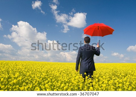 Rear view of businessman with red umbrella walking in yellow meadow - stock photo