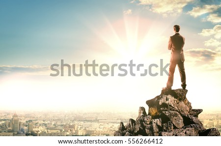 Rear view of businessman with suitcase looking at sunset above city