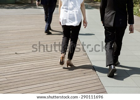 Rear view of professional businesspeople walking - stock photo