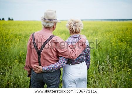 Rear view of senior couple taking a walk in the field - stock photo