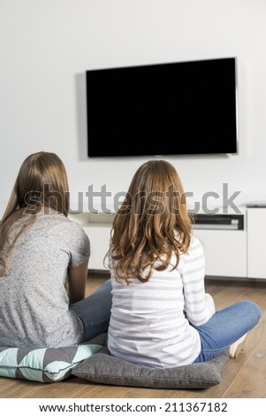 Rear view of sisters watching TV at home - stock photo