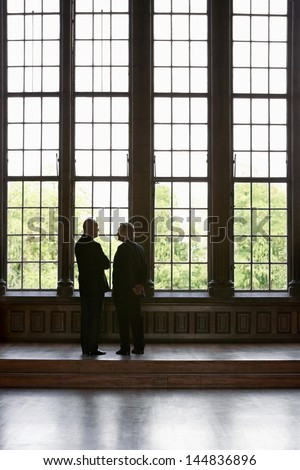 Rear view of two businessmen standing by tall windows - stock photo