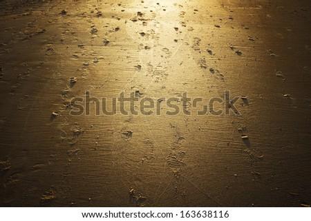 receding along the sandy shore of the sea silhouette - stock photo