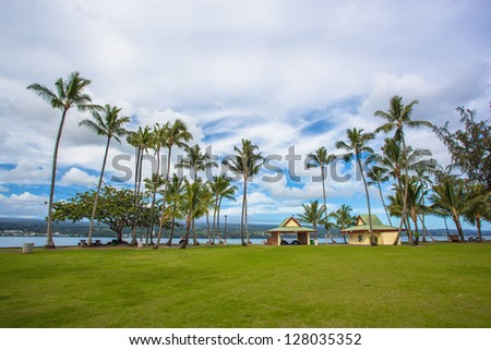 Recreation area with green lawn and tall palm trees in Hilo, Big Island, Hawaii - stock photo