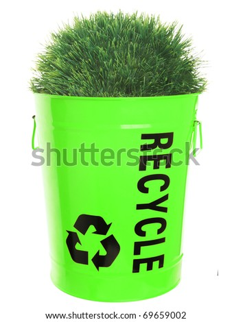 Recycling concept. Green grass growing in recycle basket. Isolated on white background. - stock photo