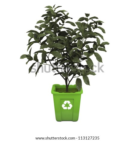 Recycling concept with young tea plant growing in green recycle bin