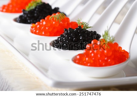 red and black caviar close-up in white spoons. horizontal  - stock photo