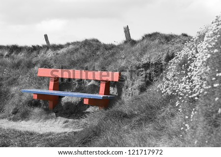 red and blue bench positioned at the edge on top of a cliff in a black and white background - stock photo