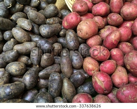 Red and Blue Potatoes: Large pile of freshly dug red and blue potatoes piled in burlap covered bin for sale at farmers market. - stock photo