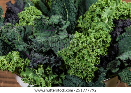 Red and green kale leaves arranged - stock photo