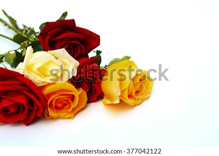 Red and orange roses flowers on white background ,valentine day