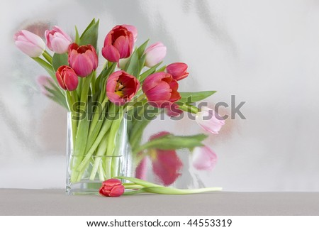 red and pink tulips in a vase - shiny reflective background, room for copy - stock photo