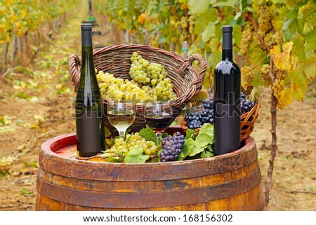 Red and white wine on a barrel in the vineyard - stock photo