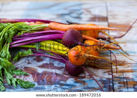 Red and Yellow Beetroots and Carrots with Green Leafs on a Wooden Table. - stock photo