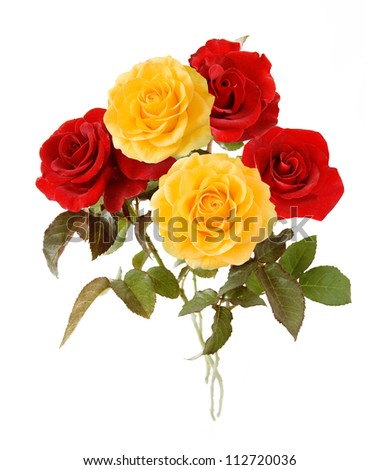 Red and yellow bunch isolated on white background - stock photo
