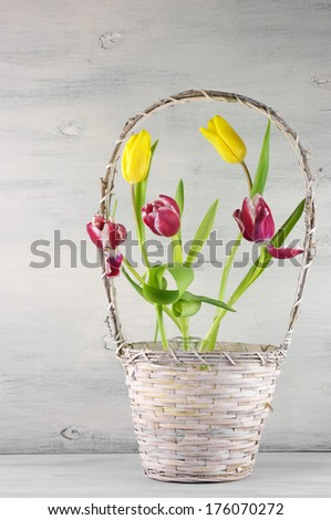 Red and yellow tulips in basket on vintage wooden background. - stock photo