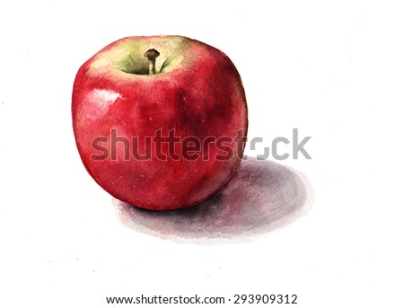 Red Apple Watercolor Illustration