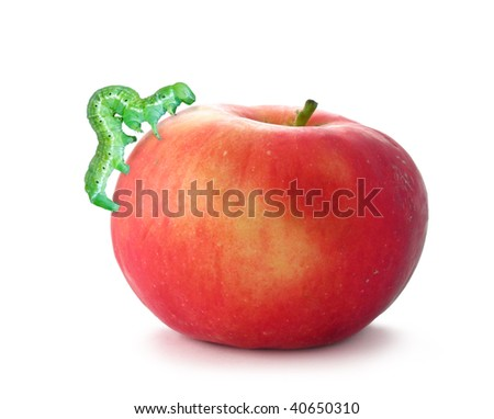 Red apple with caterpillar