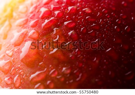Red apple with water drops. Macro - stock photo