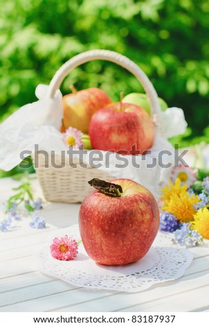 Red apples, flowers and basket in sunny summer day - stock photo