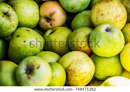 Red apples, green apples, in summer in a basket