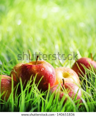 Red apples on green grass. - stock photo