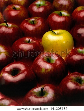 red apples with the exception of a yellow - stock photo