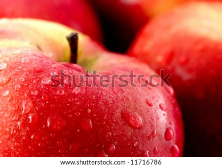 Red apples with water drops - stock photo
