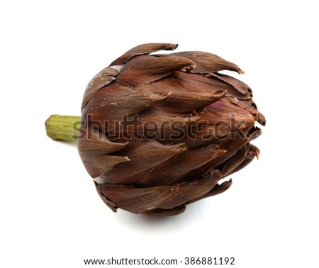 red artichoke isolated on white