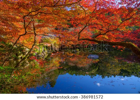 Red autumn maple leaves around the pond at Daigoji temple in Kyoto, Japan, Here is very famous during autumn season. - stock photo