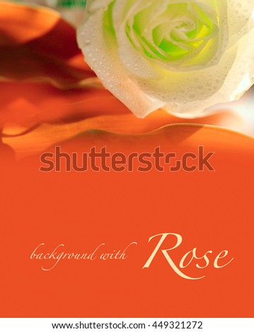red background with rose - stock photo