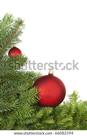 Red balls lying on spruce branches against white. - stock photo